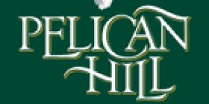 Pelican Hill Evleri
